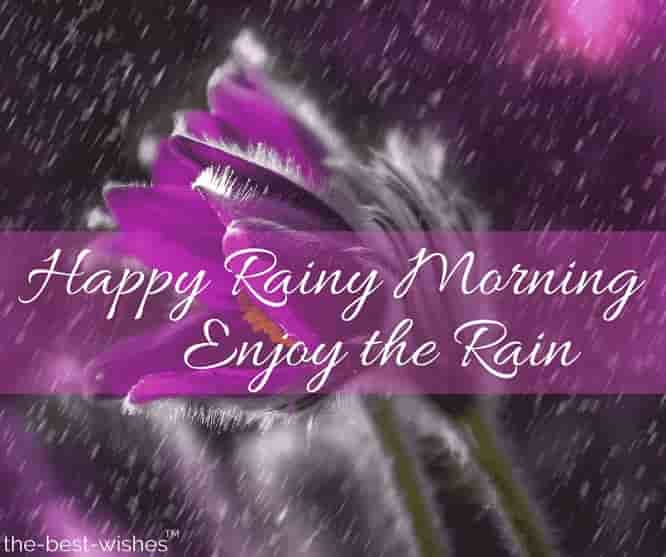 happy rainy day good morning image