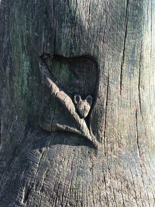 carving of a little mouse peeking out of a flap in the tree