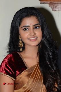 Actress Anupama Parameswaran Stills in Silk Saree with Shatamanam Bhavati Team at Sandhya Theater  0029.JPG