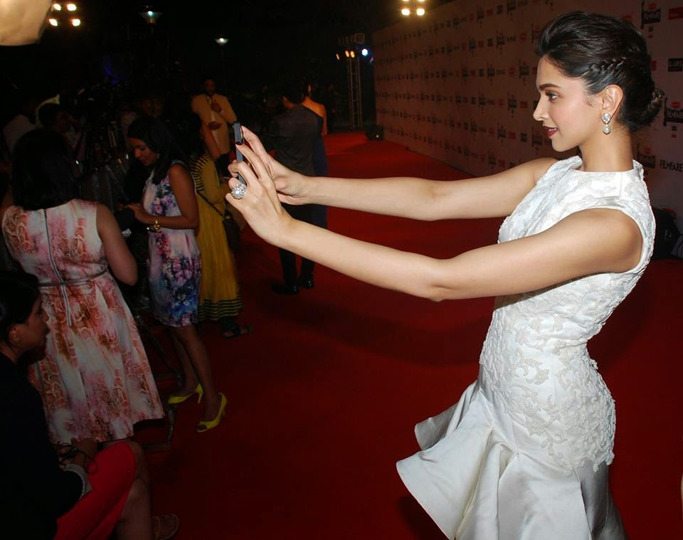Celebs at 60th Britannia Filmfare Awards 2014