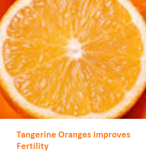 Health Benefits of Tangerine Oranges - Improves Fertility
