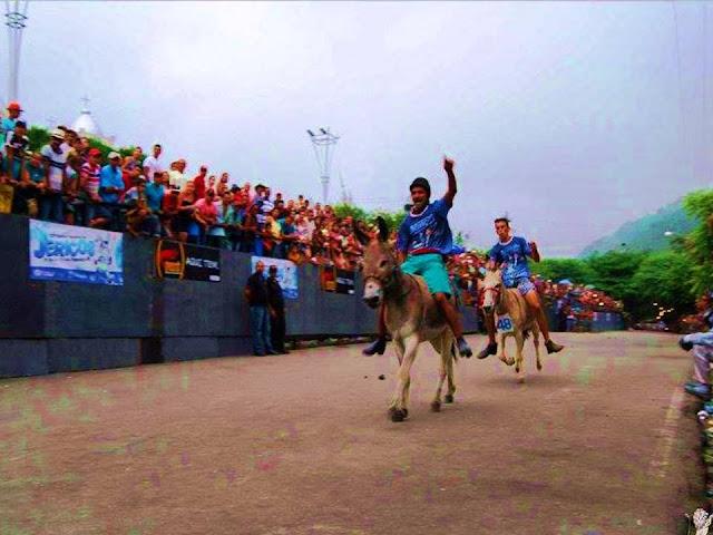 Corrida de Jericos - Festival Nacional de Jericos 2016