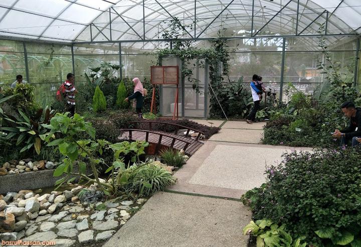 Taman Rama-Rama Agroteknologi MARDI, Cameron Highlands