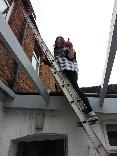 girls on ladders