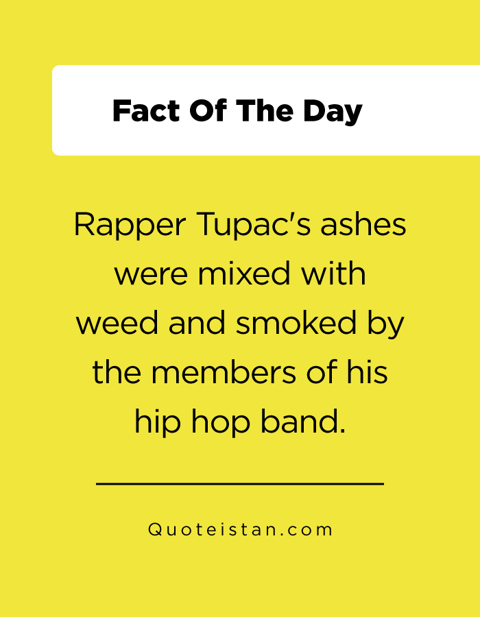 Rapper Tupac's ashes were mixed with weed and smoked by the members of his hip hop band.