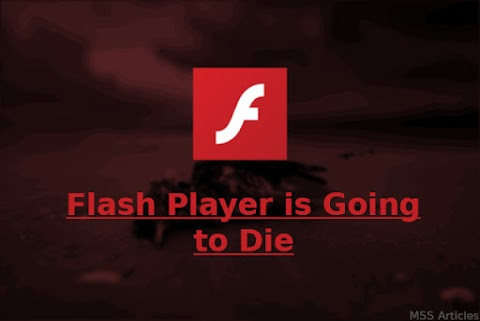 Steve Jobs was Right - Flash Player is Going to Die