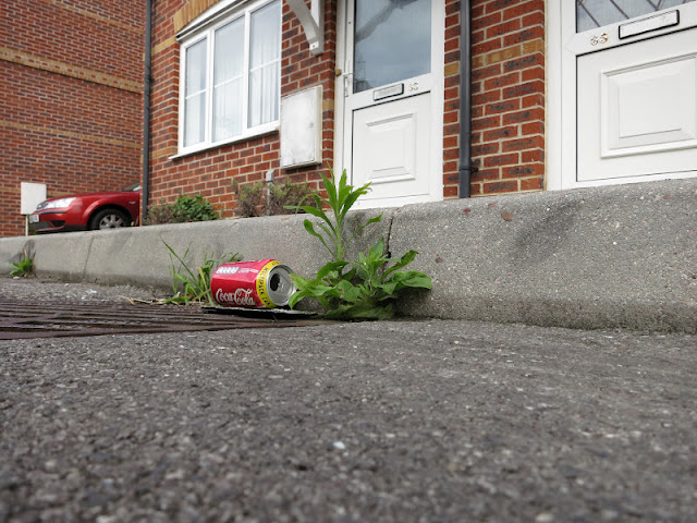 Coca-cola can in kerb
