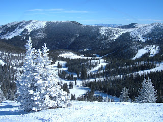 Looking down upon the ski area with snow packed trees on a sunny day.