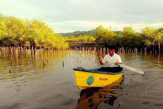 Dayung Kanoe di kawasan ekowisata mangrove