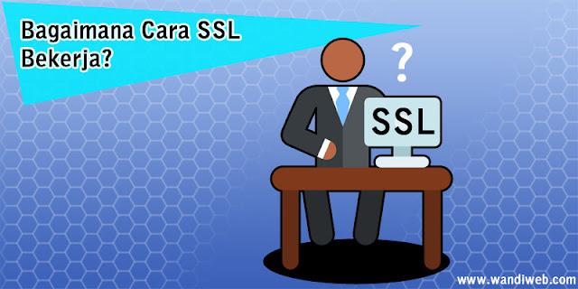 Pentingnya SSL/HTTPS untuk Keamanan Website dan Bisnis - WandiWeb