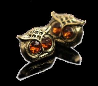 nausnice, sova, earrings, owl, owl earrings, banggood product, sweet, cute, nakit, modni dodatak, sovice, banggood iskustvo, online shop, sajt, wishlist, poklon, naušnice za poklon, slatke naušnice, blog, lovely, vintage