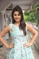 Nikki Galrani at Prema leela pelli gola trailer Launch ~  Exclusive 119.JPG