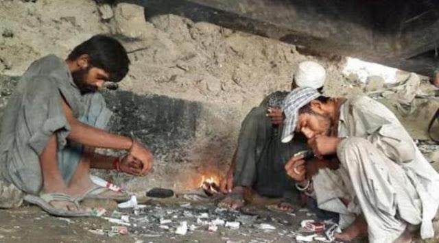 Tingkah Laku Ekstrem Para Pecandu Rokok Kalajengking