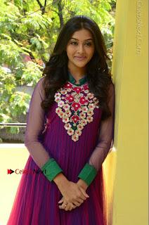 Actress Pooja Jhaveri Latest Stills in Purple Salwar Kameezt at Dwaraka Success Meet  0115.JPG