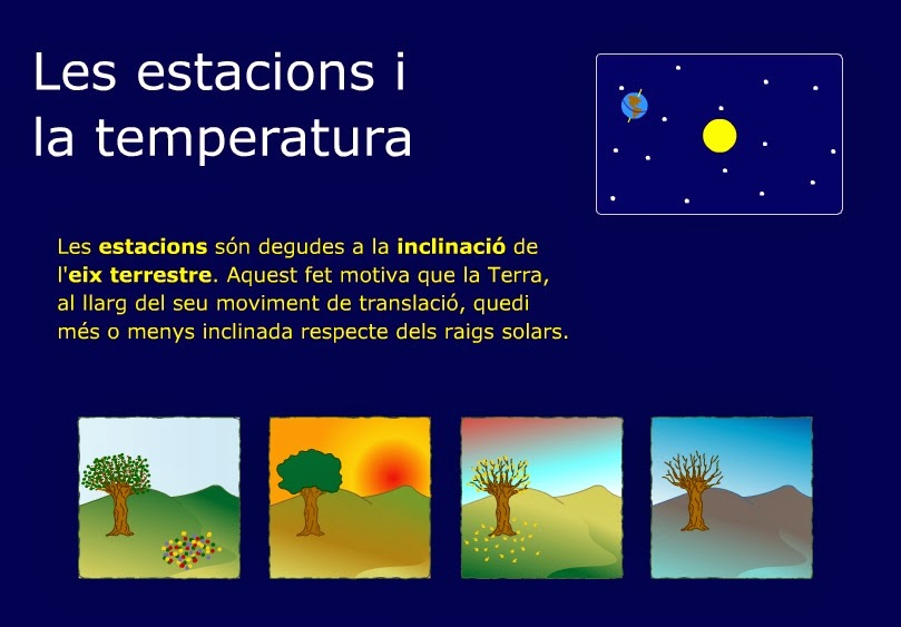 http://www.escolamariagali.cat/act/actmedi/temperatures.swf