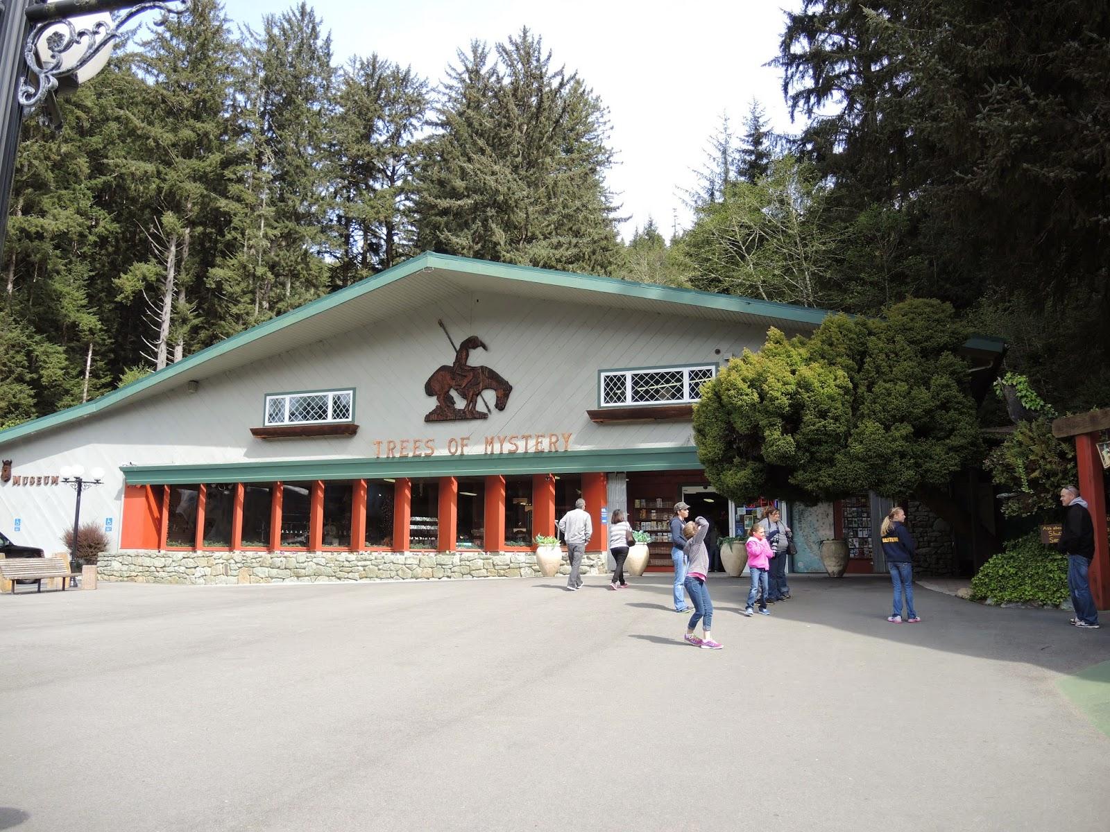 Redwood national park 3