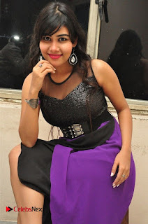 Telugu Actress Rachana Smith Stills at Money is Honey Audio Release  0034.jpg