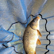 Paul on Coarse Fishing: Trip #96 - Easter Annualisation