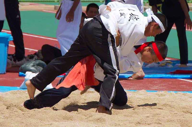 Okinawan Sumo
