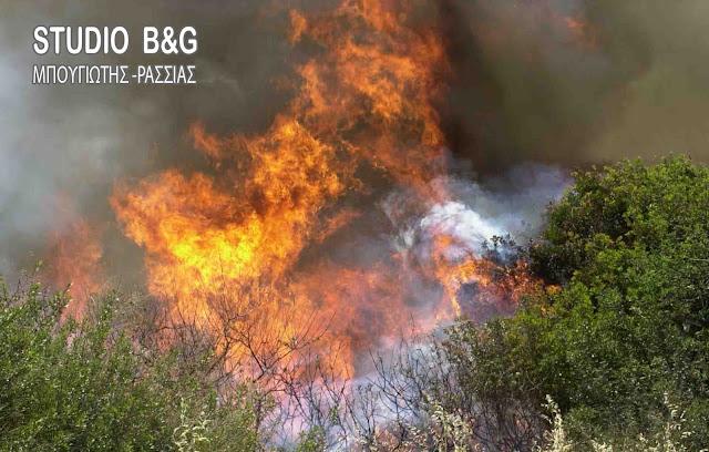 Αργολίδα: Πρόστιμα από την πυροσβεστική για πρόκληση πυρκαγιάς