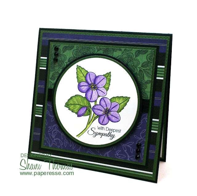 African Violet sympathy card, by Paperesse.