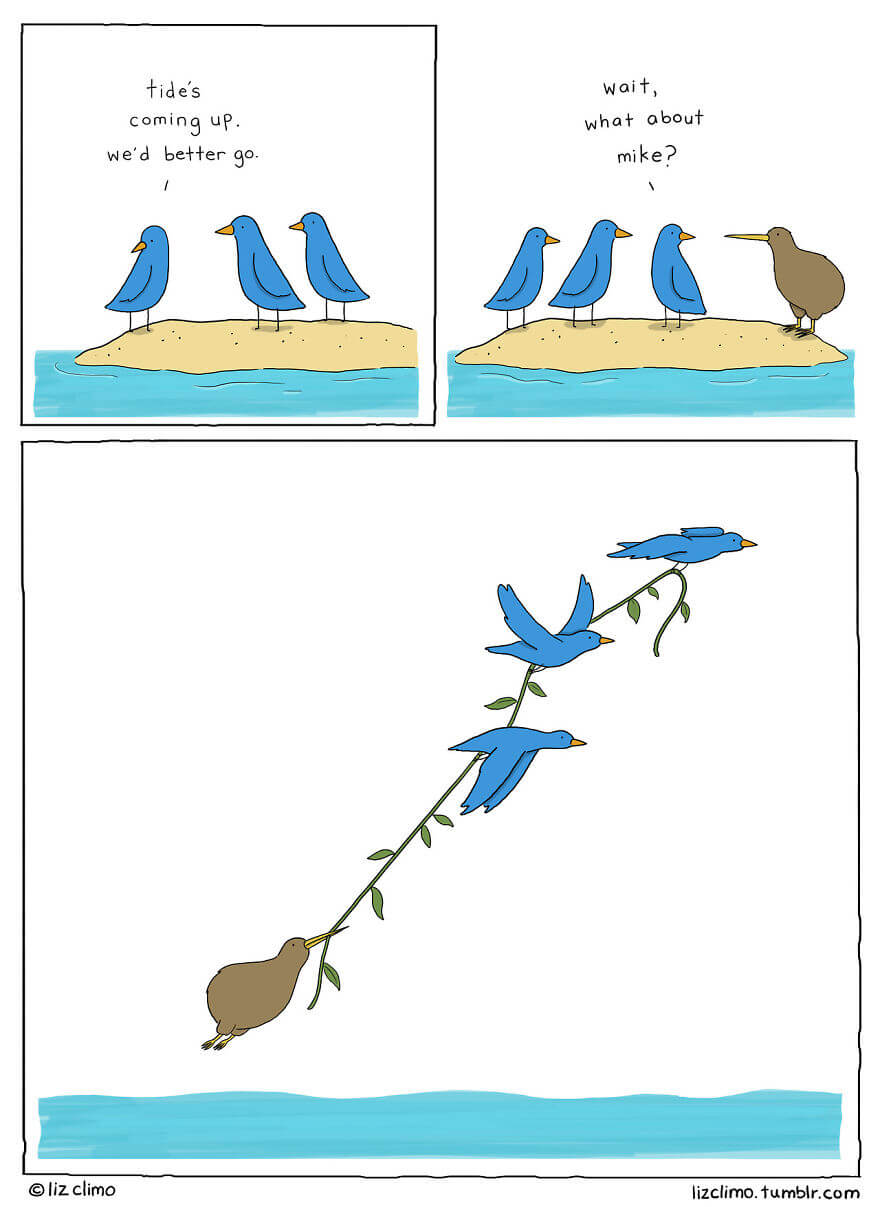 Simpsons Animator Liz Climo Draws Quirky Moments Of The Animal Kingdom