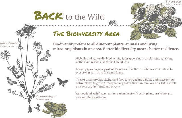 Back to the Wild - Full Image