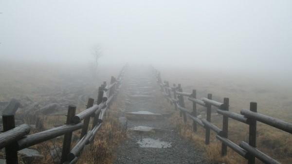 美ヶ原高原の霧中の道