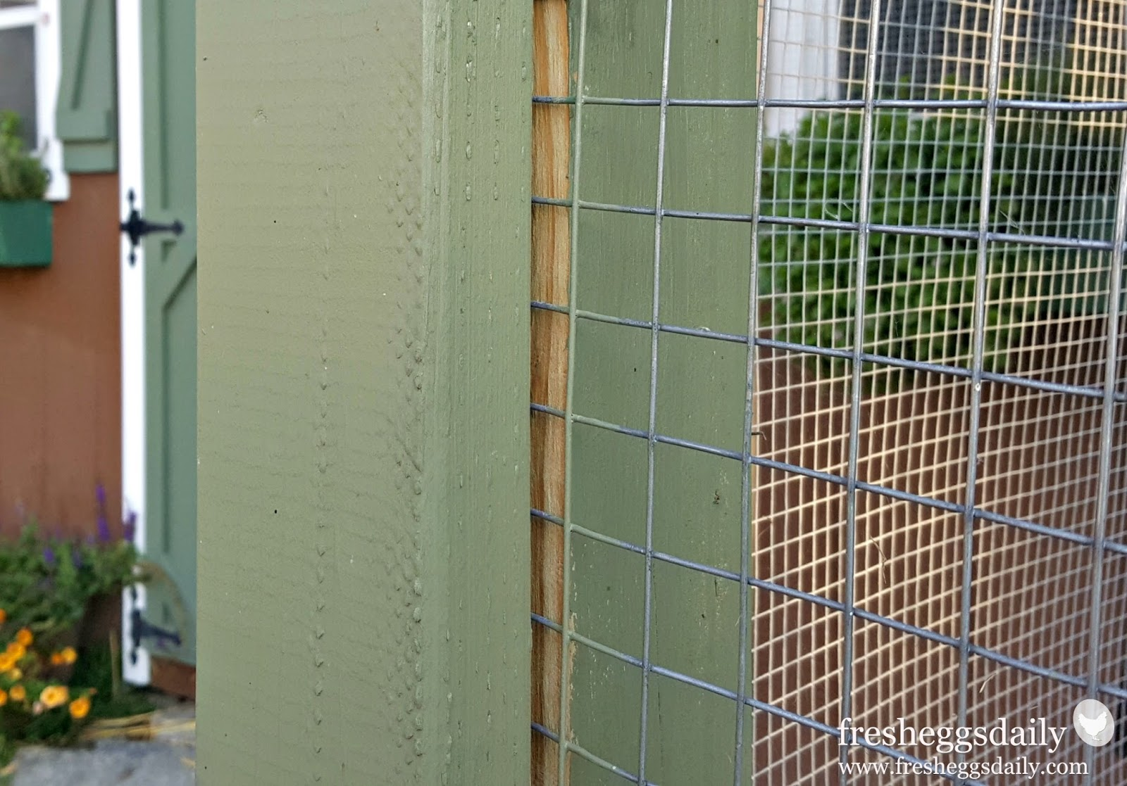 Wire Fencing Choosing The Right Fencing For Your Chicken Coop Run Or Garden