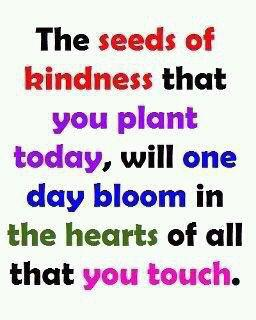 Plant seeds of kindness
