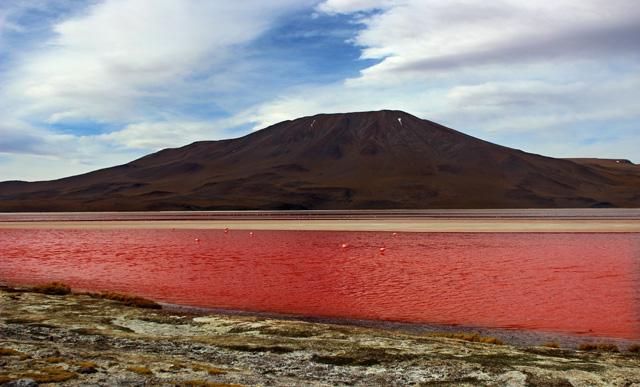 La Laguna Colorada, en la frontera con Chile