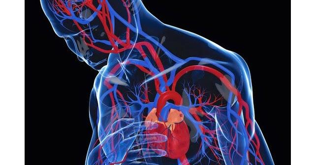 Henti Jantung Dan Serangan Jantung Sama Sama Mematikan