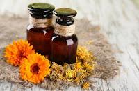 el aceite de caléndula (antiinflamatorio, antiséptico)