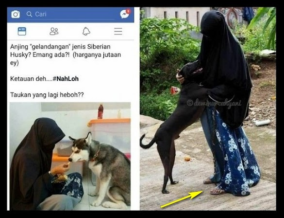 "Blow Up Media ""Cadar dan Anjing"": Perang Pemikiran/Produk untuk Mendistorsi Islam"