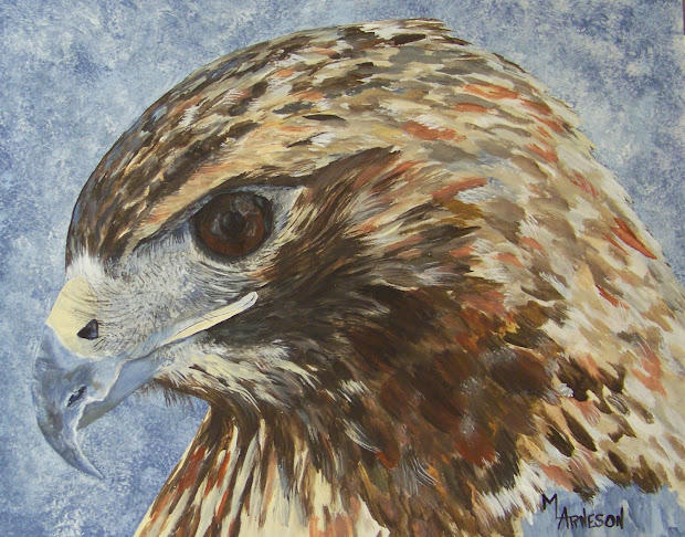Oil Painting Hawk