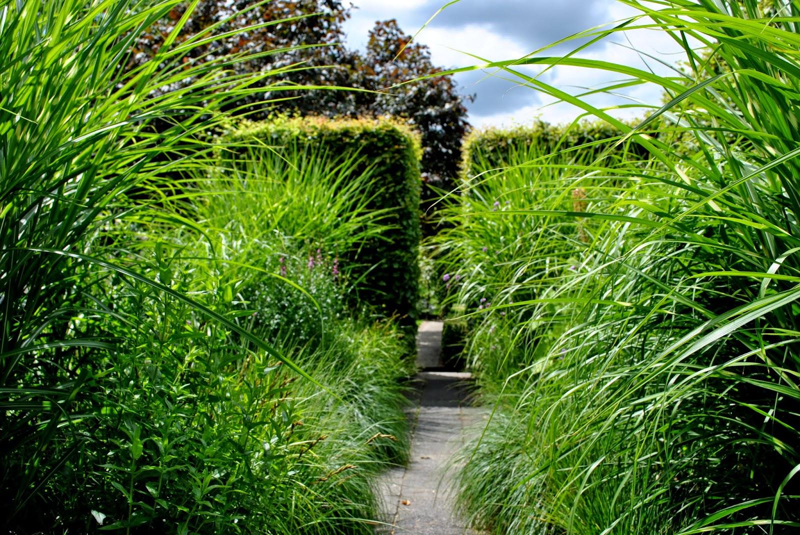 Formschnittgarten und hohe Gräser