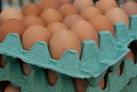 grosir telur, usaha grosir telur, bisnis grosir telur, telur, usaha grosir, grosir telur ayam, cara grosir telur