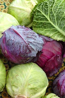 Propiedades de las coles, col rizada, col lombarda, kale, coles de bruselas, berzas, etc.