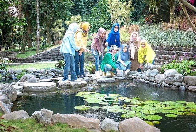 Kolam Koi Wisata Taman Botani Sukorambi Jember
