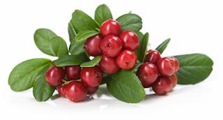 arándano-rojo-trucos-cistitis