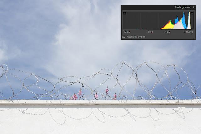 Revelado básico con Lightroom - histograma