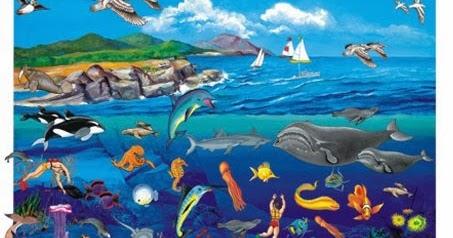 Ocean ecosystem for kids | Childhood Education