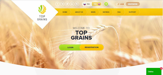 Review Top Grains Limited