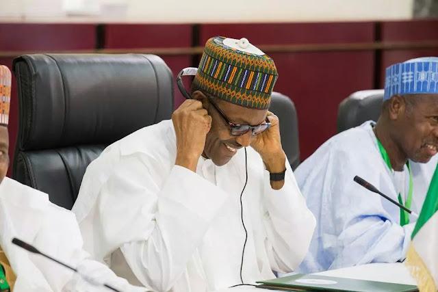 buhari visit niger republic