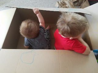 kids playing in a cardboard box