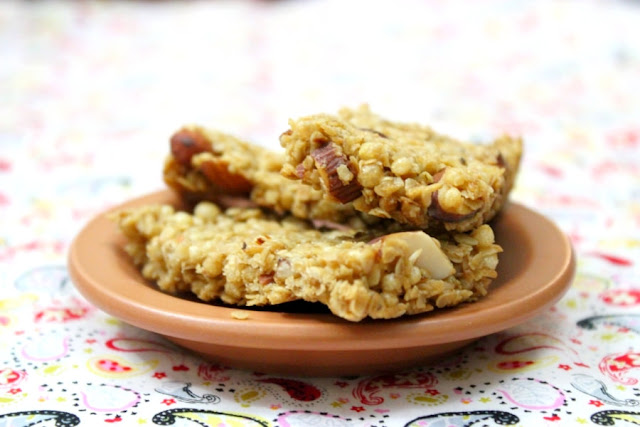 Backpacker Cereal Bars RV recipes