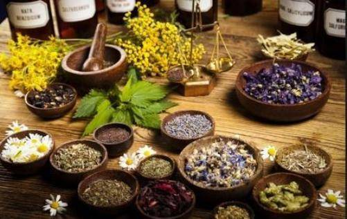 Getting Answers to Your Health Question - Alternative, and Integrative Medicine
