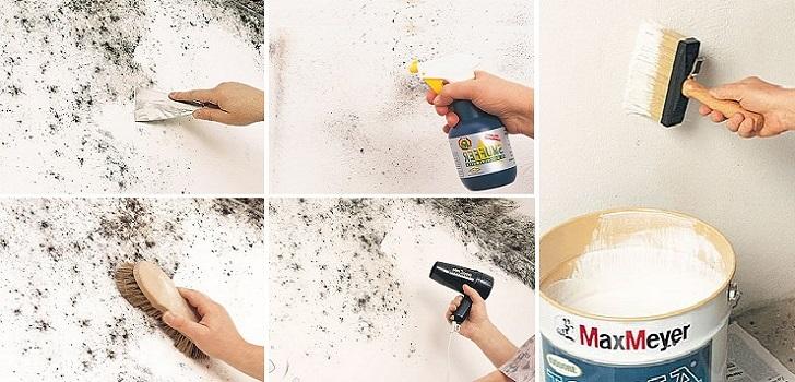 Come eliminare le macchie di muffa dalle pareti in modo for Eliminare la muffa