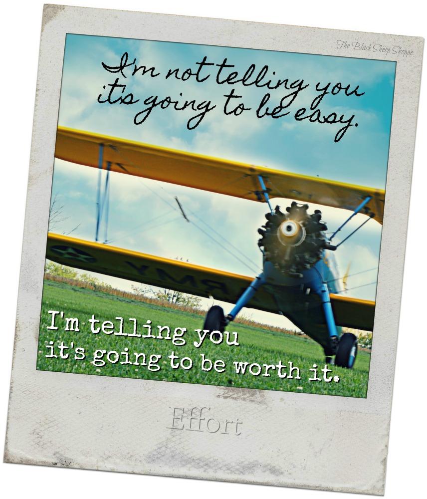I'm not telling you it's going to be easy. I'm telling you it's going to be worth it.
