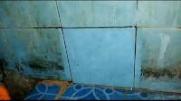 pembersih lantai kamar mandi paling ampu